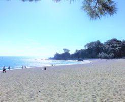 青い海と白い砂浜の桂浜の写真