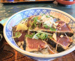 桂浜荘にあるレストラン「きてみいや」の鰹たたき丼の写真